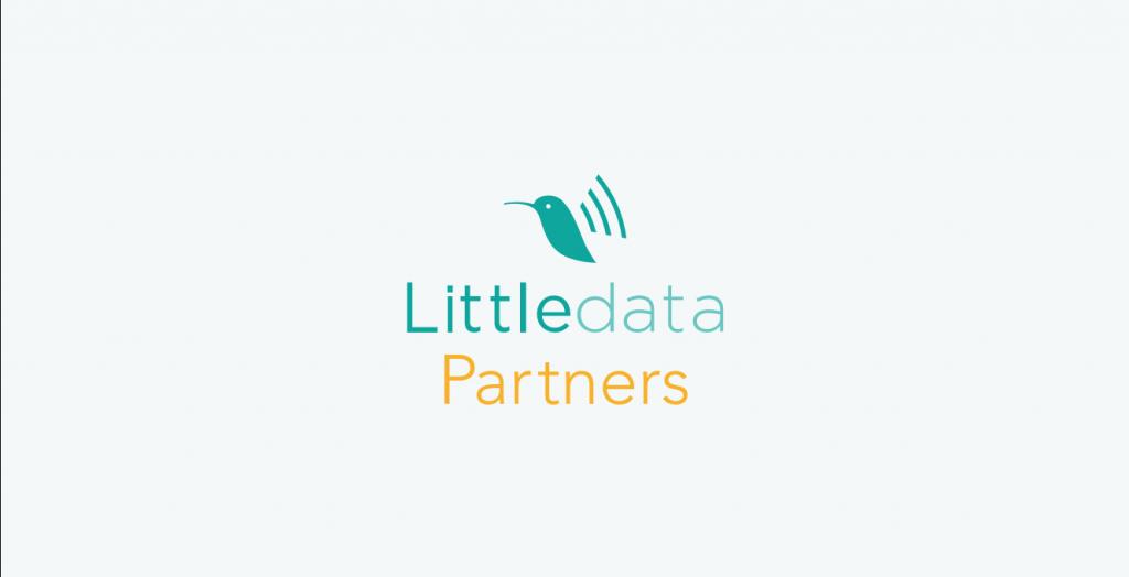 Littledata's agency partner program